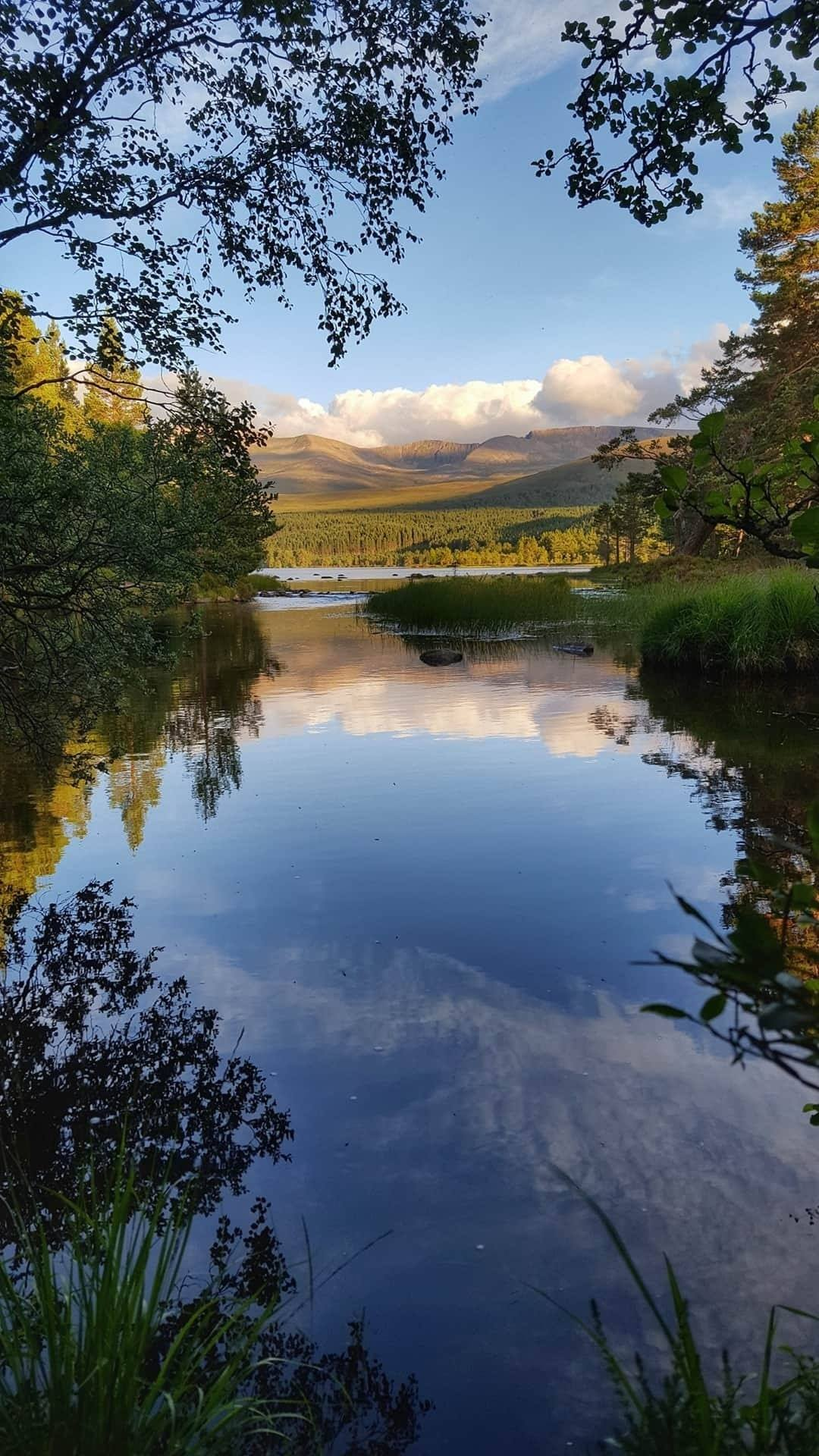 Loch Morlich, looking towards the Cairngorms, Inverness-shire, Highlands of Kingussie