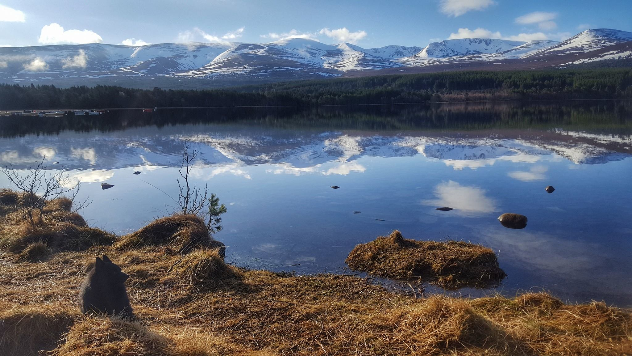 Loch Morlich, looking towards the Cairngorms